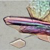 Photo 的 a crystal obtained by the Holden Lab